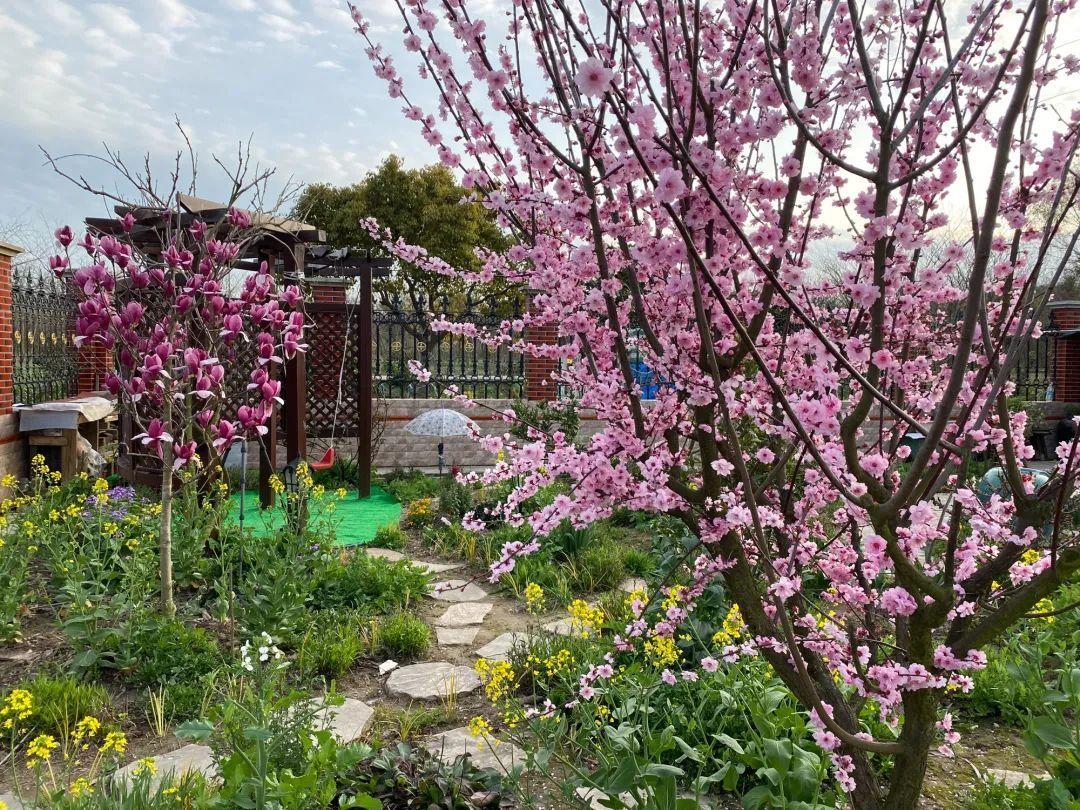 全国11个绝美花园,小阳台、露台、大花园应有尽有,供你参考!