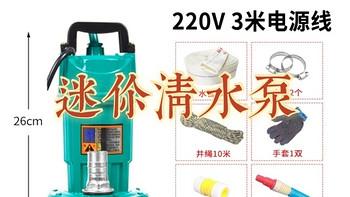 居家维修厮 篇十一:迷你抽水机/潜水泵220V水泵家用抽水小型抽水泵污水泵灌溉抽粪不锈钢