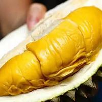 终于知道榴莲为啥这么贵了!知道真相的我差点都不敢吃了!