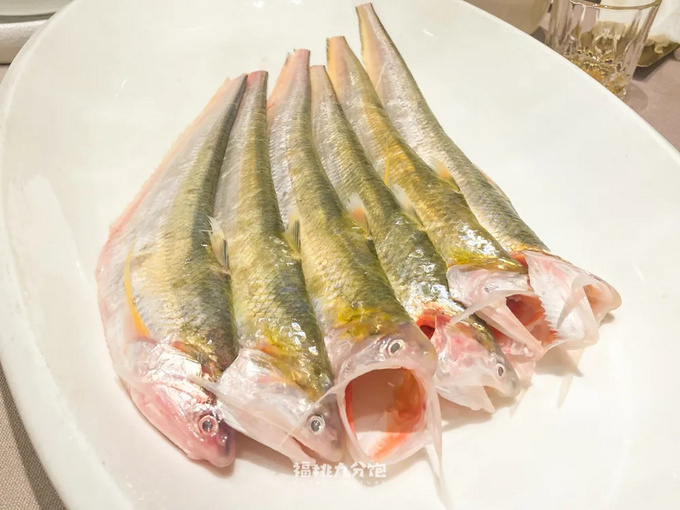 8000一斤的刀鱼,为什么会拿来包馄饨?