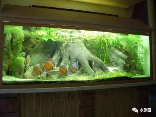 墙裂推荐| 养鱼的常用公式,你知道多少?