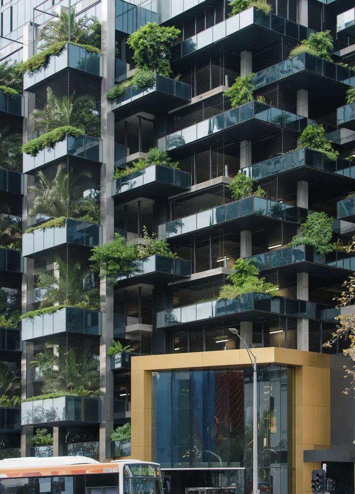 100层的超高公寓楼,高奢住宅的新样板