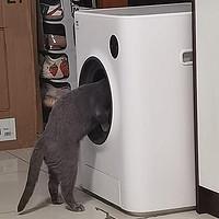 生活向 篇四:新一代滚筒洗衣机——鸟语花香Ameifu智能猫砂盆首发测评