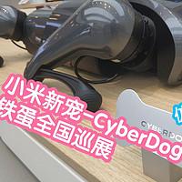 小米新宠CyberDog。小米秋季发布会惊喜之铁蛋。32N·m伺服电机,11个传感器
